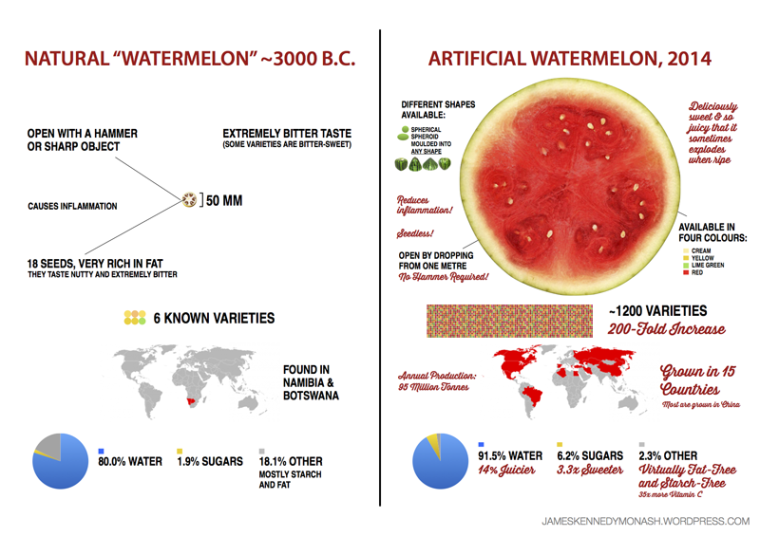 artificial-natural-watermelon_jkennedy